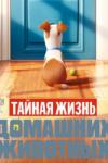 лоракс смотреть онлайн 2015 мультфильм в хорошем качестве